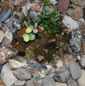 miniature fairy pond to make